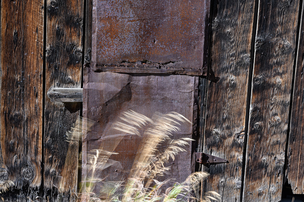 Blowing grass by old shack