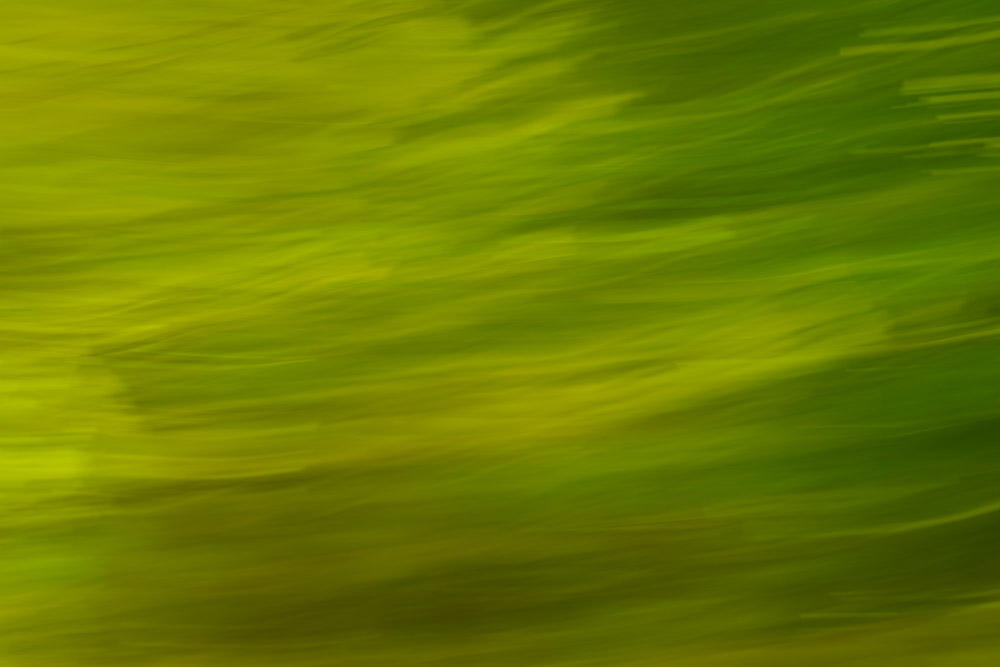 Flowing green shapes and lines